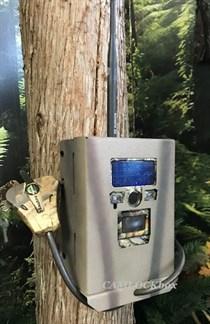 Ridgetec Summit 4 Security Box-1