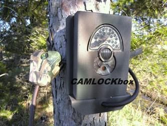 DLC Covert 1 Tree