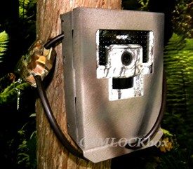 USA Trail Cams Recruit Security Box