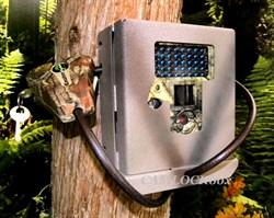 Covert Viper Security Box