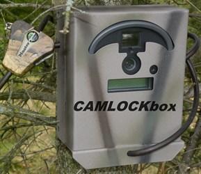 Moultrie Plot Stalker Box